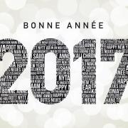 Bonne année 2017 / Happy New year 2017