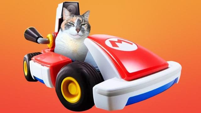 Mario Kart Live Vs. My Cats