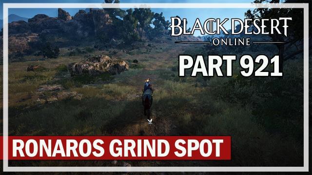 Black Desert Online - Let's Play Part 921 - My Ronaros Grind Spot for Infinite Potion