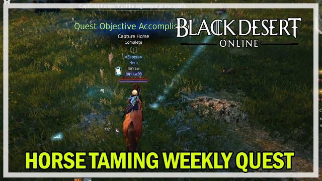 Black Desert Online - Weekly Horse Taming Quest for T10 Materials
