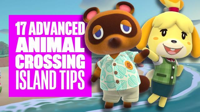 Animal Crossing: New Horizons: 17 Advanced Tips and Tricks for Your Island