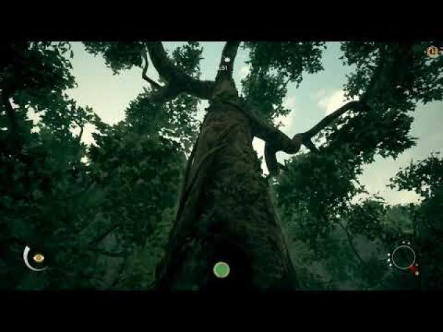 Ancestors: The Humankind Odyssey Trainer +14