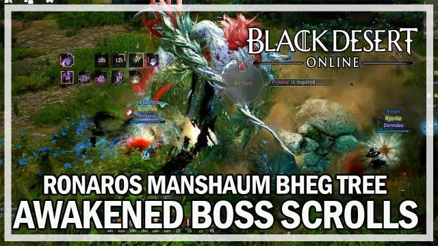 Black Desert Online - Dark Knight Awakened Boss Scrolls