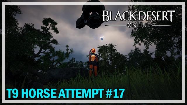 Black Desert Online - Tier 9 Horse Attempt #17 & Awakened Bosses